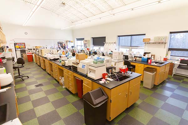 Microbiology and Biotechnology Lab (207)