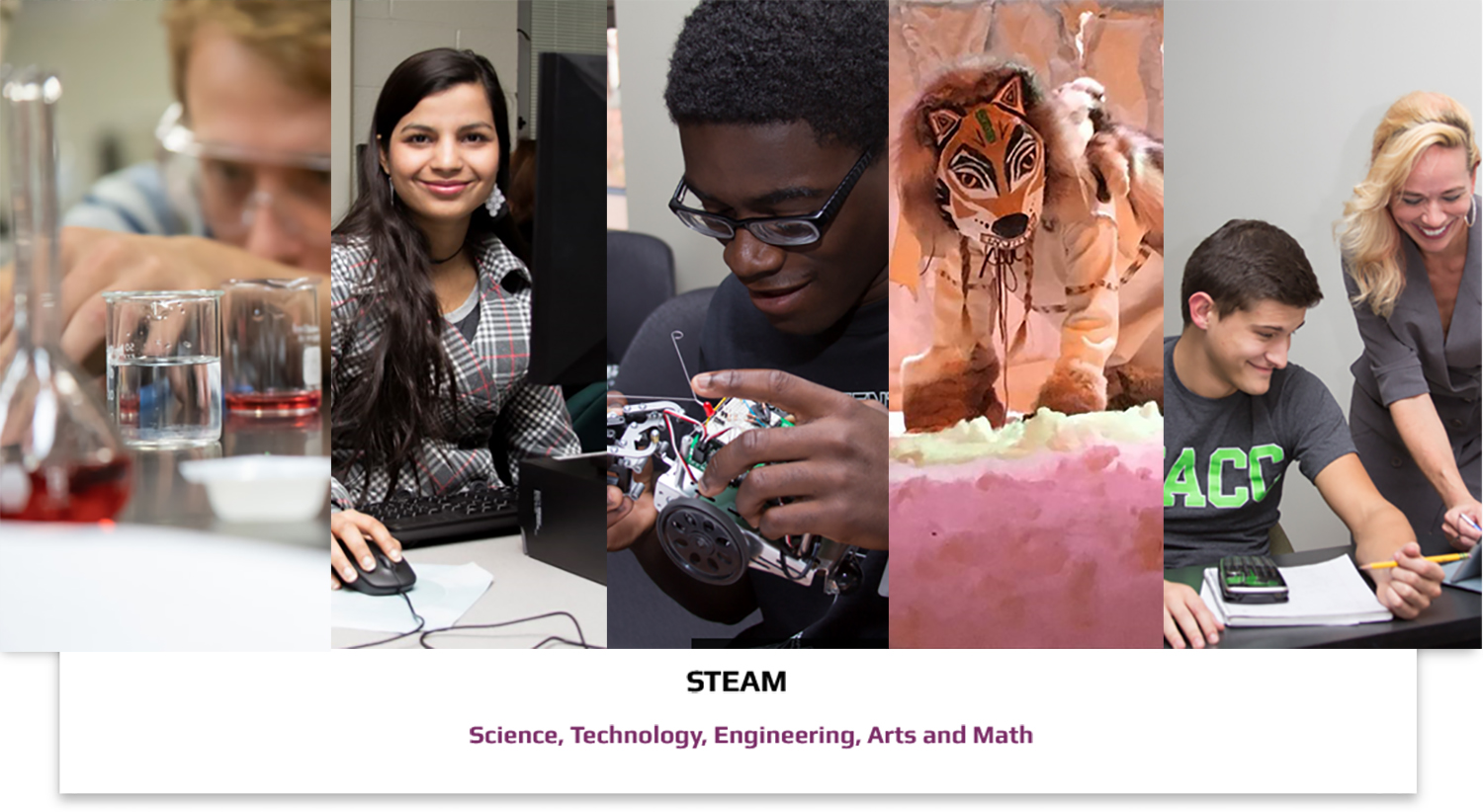 Fund for Excellence in STEAM Photo