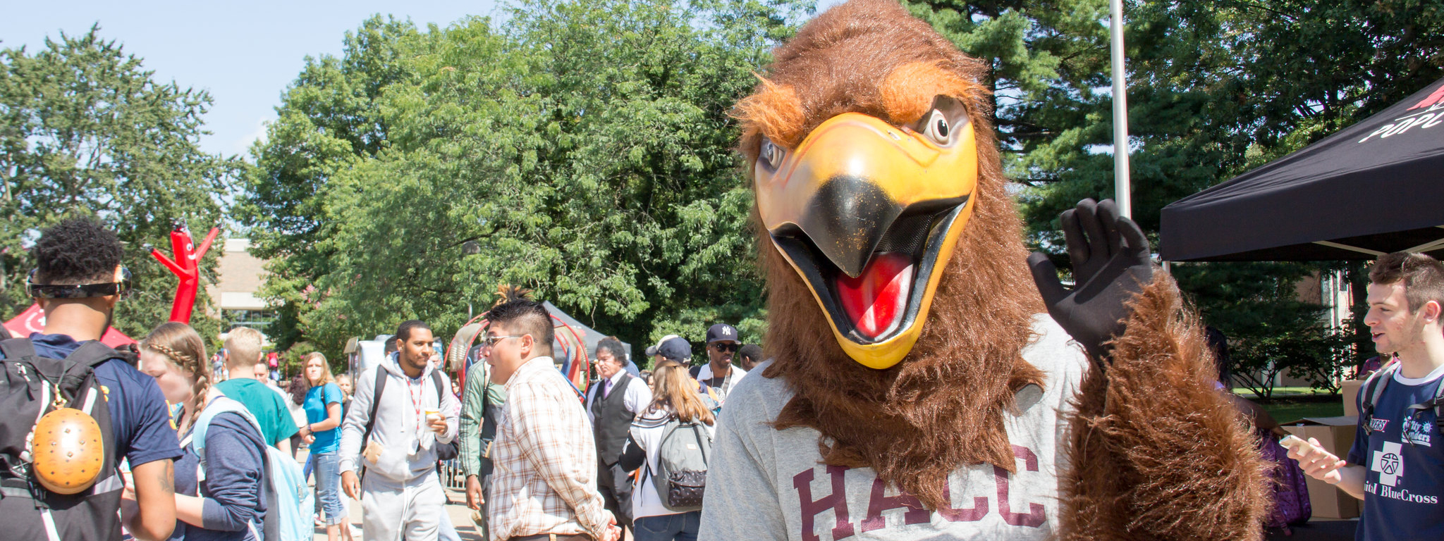 Take HACC Classes on Campus or Online!